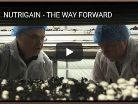 Healthy Mushrooms (video)