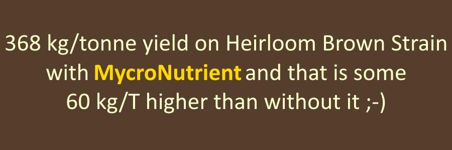 Mushroom nutrients